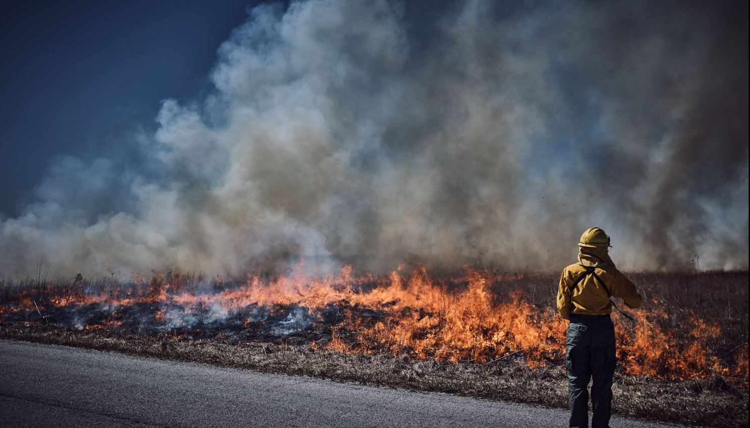 Fire fighter standing in front of a field fire.